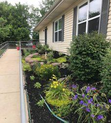 house-springs-front-garden